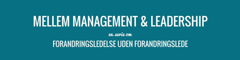 Management og leadership - derfor skal du kende forskellen og de indbyrdes relationer